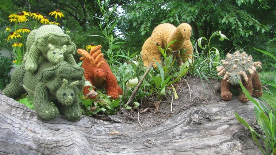 Link to Dinosaur patterns portfolio